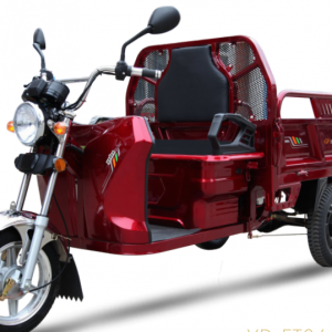 Skyteam dt1500 cargo scooter